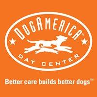 Dog America DayCare Center