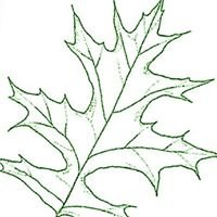 Plant Reps, Inc.