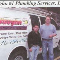 Vaughn #1 Plumbing Services