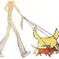 While Away Dog Walking