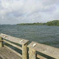 Oak Thicket Lake Fayette