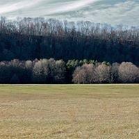 Tinicum County Park