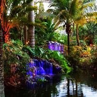 Bamboo and Orchid Gardens Since 1991
