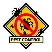 Speer Termite & Pest Control