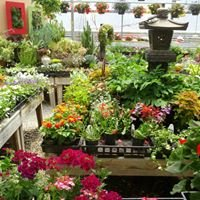 Walter's Greenhouse