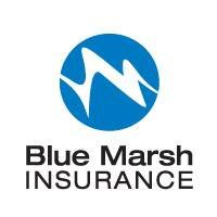 Blue Marsh Insurance, Inc.