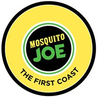 Mosquito Joe of the First Coast