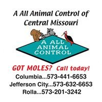 A All Animal Control of Central Missouri