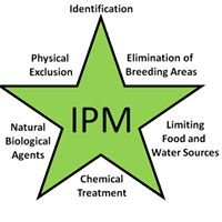 Chase IPM