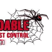 Affordable Termite and Pest Control