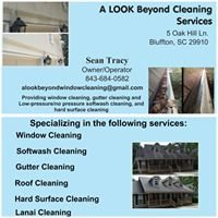 A Look Beyond Cleaning Services