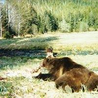 Alaska Ravenguides llc