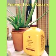 Forever Living Sussex