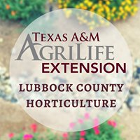 Lubbock AgriLife Extension Horticulture