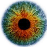 Dan & Hoffman, M.D.'s, P.A. d/b/a Eye Centers of South Florida