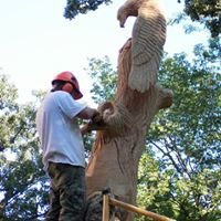 Hawk Hollow Chainsaw Carvings & Wood Creations