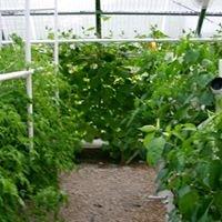 Sopchoppy Farms Team Hydro