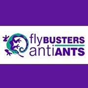 Flybusters Antiants Marlborough