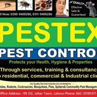 Pestex