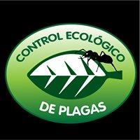 Fumigadora Control Ecológico de Plagas T&A