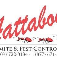Aattaboy Termite & Pest Control, Inc.