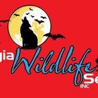 Atlanta Wildlife Removal - Georgia Wildlife Services