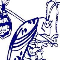 Budget Termite & Pest Control
