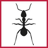 Action Pest Services