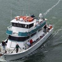 Sea Trek Fishing