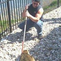 Wildlife Nuisance Removal Service