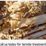 Pest Control of Columbus Ohio