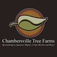 Chambersville Tree Farms