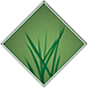 AZ Luxury Lawns & Greens Tucson