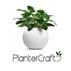 Plantercraft