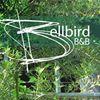 Bellbird Cottage B&B, Bermagui, NSW Australia