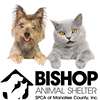 Bishop Animal Shelter, SPCA of Manatee County, Inc.