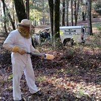 Turner Termite and Pest Control