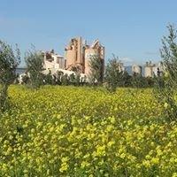 Lafarge Ciments usine de Meknes