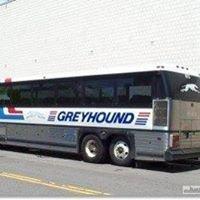 LeeTran/Greyhound Bus Station Downtown FtMyers