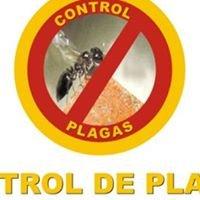 Control de Plagas Cancun