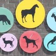 Southwest Louisiana Veterinary Clinic
