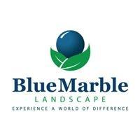 Blue Marble Landscape