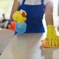 Details Plus of Wilmington Cleaning Service