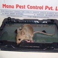 Pest Control in India