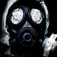 Fumigación/desratizacion profesional El Sab-hueso