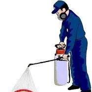 Fumigaciones y Servicios Profesionales del Golfo