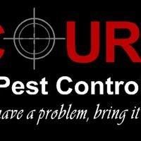 Court Pest Control LLC