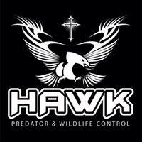 Hawk Predator & Wildlife Control