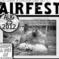 Air Fest