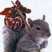 QualityPro Pest & Wildlife Services Inc.